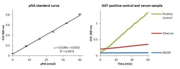 天冬氨酸转氨酶(AST或SGOT)活性比色检测试剂盒.png
