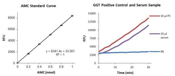 γ谷氨酰转移酶(GGT)活性荧光检测试剂盒.png