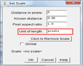 5Set-Scale.png