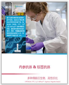 内参/标签抗体手册
