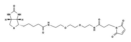 Biotin3.png