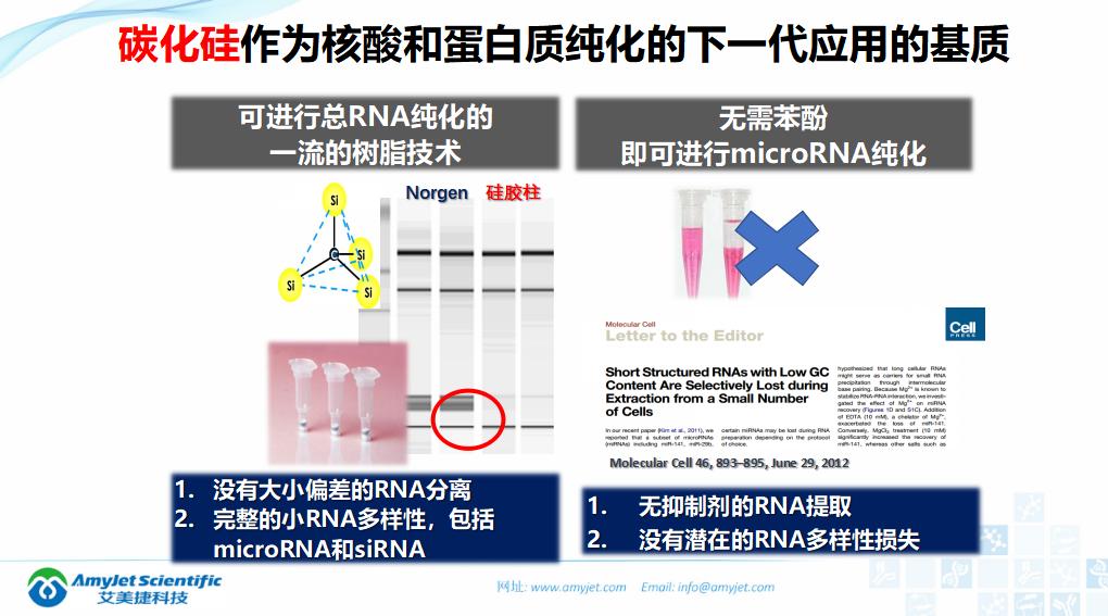 202005-核酸保存提取鉴定专家_16.png