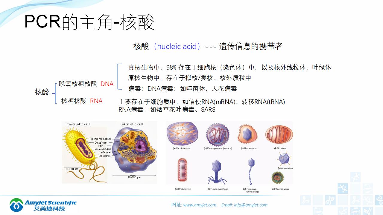 202006-PCR背景与解决方案_02.png