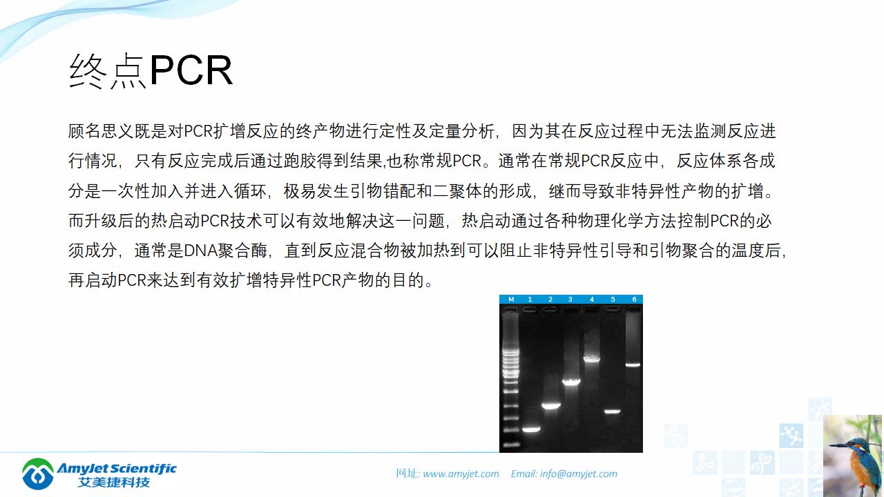 202006-PCR背景与解决方案_12.png