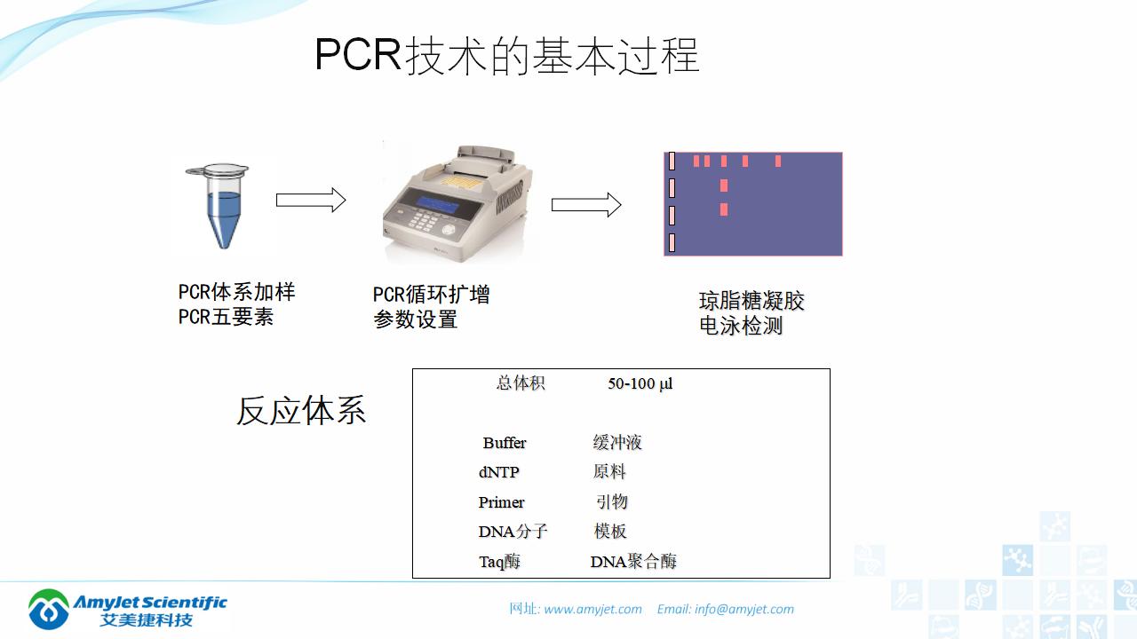 202006-PCR背景与解决方案_08.png