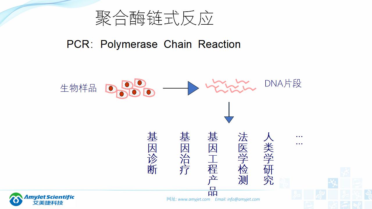 202006-PCR背景与解决方案_05.png