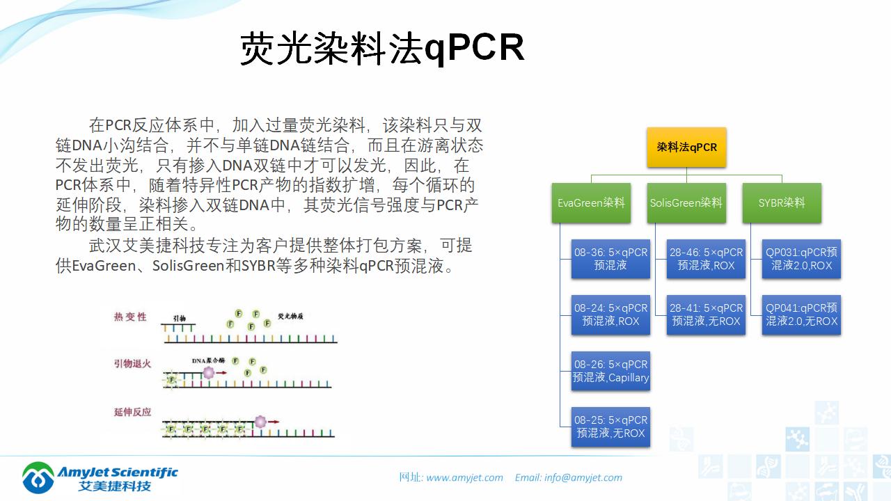 202006-PCR背景与解决方案_23.png