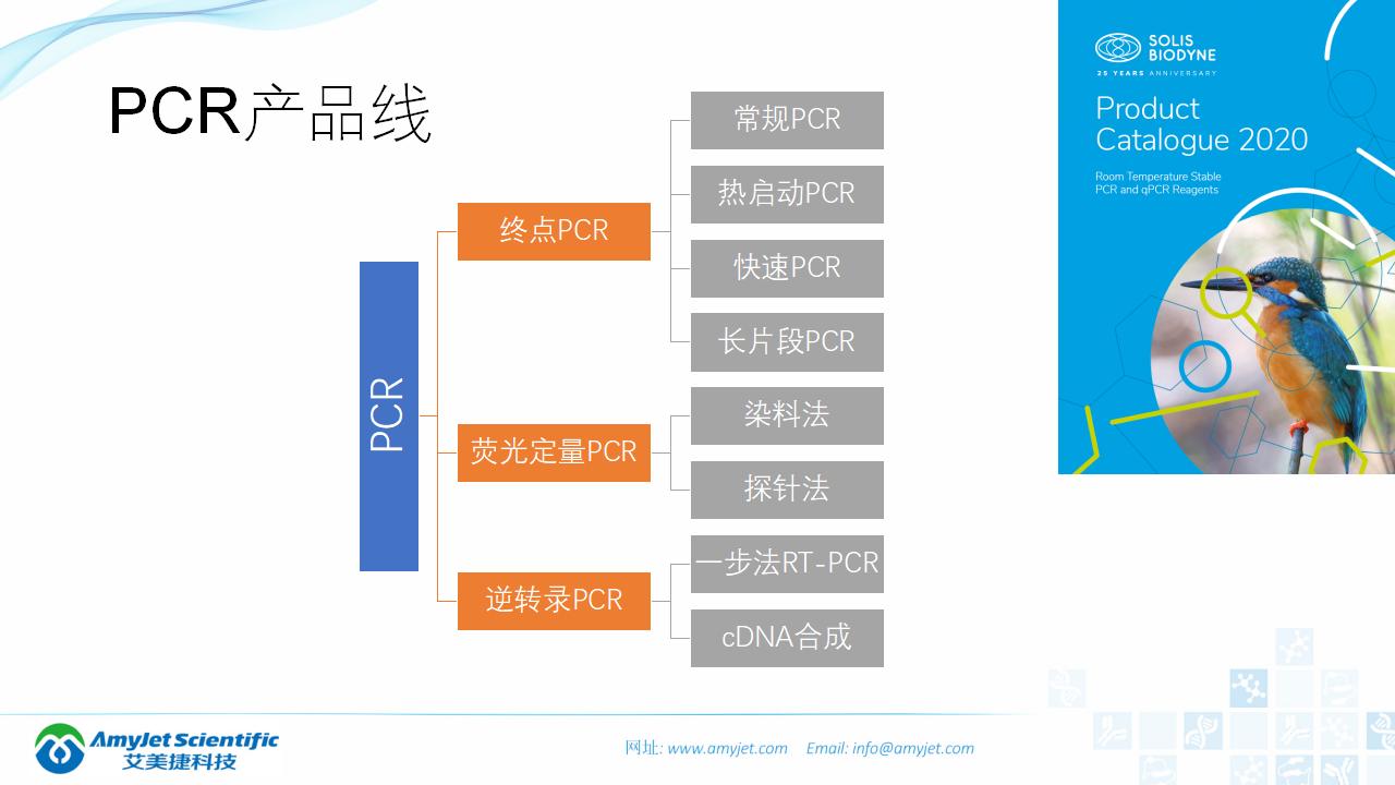 202006-PCR背景与解决方案_11.png