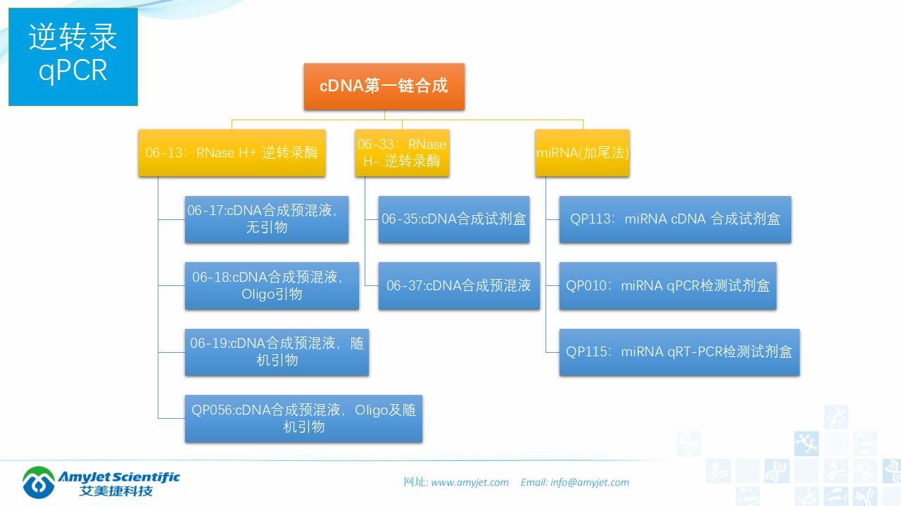 202006-PCR背景与解决方案_46.png