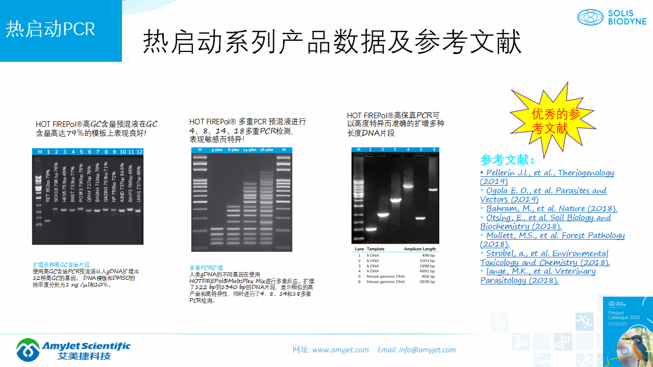 202006-PCR背景与解决方案_17.png