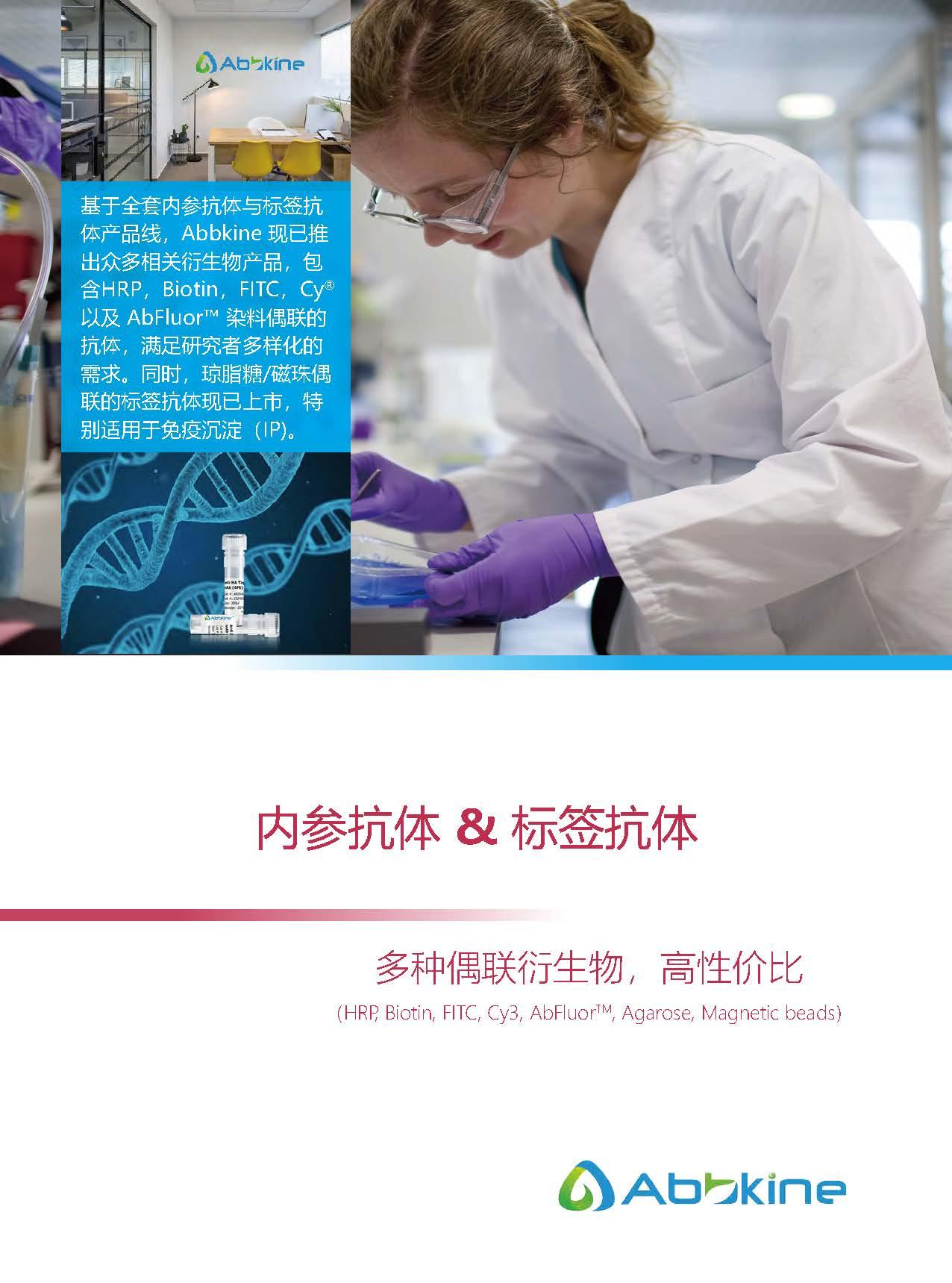内参抗体与标签抗体产品线-产品手册