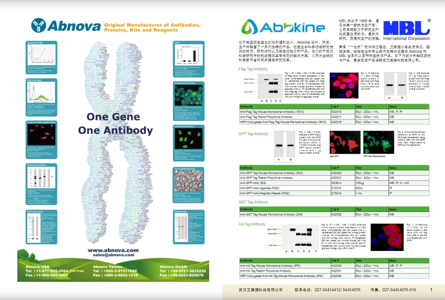 现货一抗与特色抗体手册