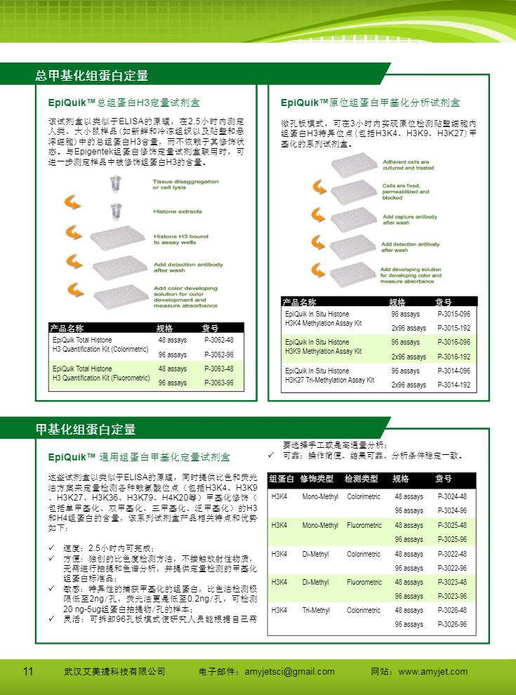 表观遗传研究方案产品折页